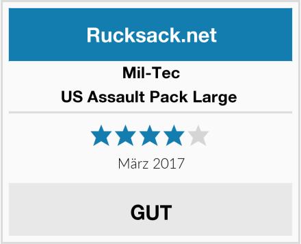 Mil-Tec US Assault Pack Large  Test